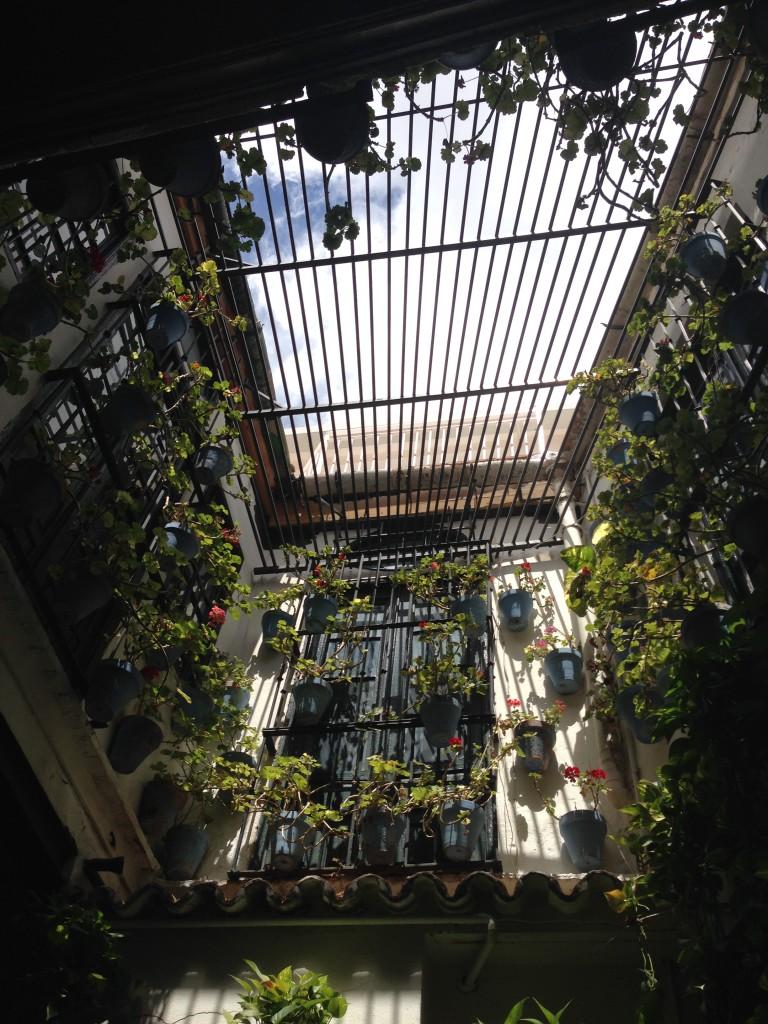 Restaurant courtyard, Malaga