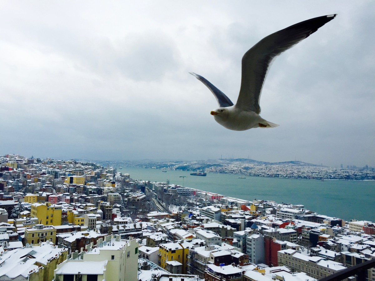 IstanBRR: Traveling Istanbul During Winter